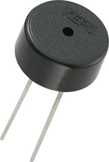 Piezo-Signalgeber Geräusch-Entwicklung: 70 dB Spannung: 3 V Dauerton KEPO KPT-G1340P22-6237 1 St.