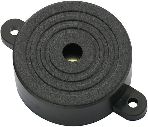 Piezo-Signalgeber Geräusch-Entwicklung: 90 dB Spannung: 12 V Dauerton KEPO KPI-G4210L-6282 1 St.