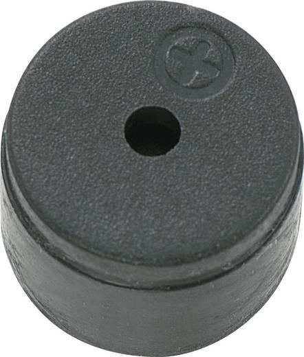 Magnetischer Signalgeber ohne Elektronik KPMG-Serie Geräusch-Entwicklung: 80 dB 1.5 V/AC Inhalt: 1 St.