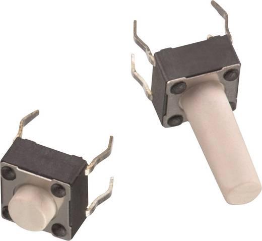 Drucktaster 12 V/DC 0.05 A 1 x Aus/(Ein) Würth Elektronik WS-TSS 430156070726 tastend 1 St.