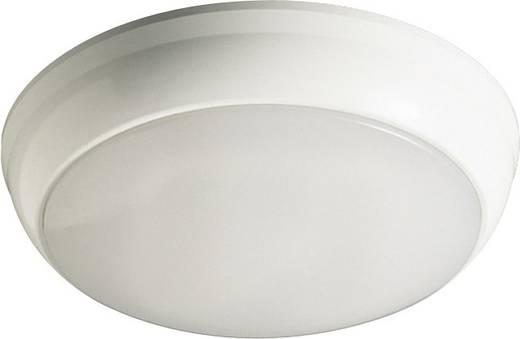 Außenwandleuchte Kompakt-Leuchtstofflampe GR10q Thorn Club 96230468 Weiß