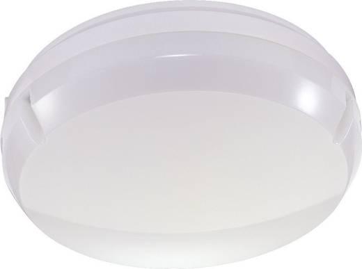 LED-Außenwandleuchte mit Bewegungsmelder 17 W Neutral-Weiß Thorn Leopard 96240255 Weiß