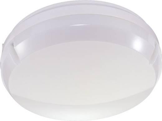 LED-Außenwandleuchte 17 W Neutral-Weiß Thorn 96240254 Weiß