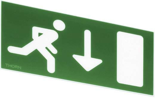 Fluchtweg-Hinweisschild runter Thorn 96233876