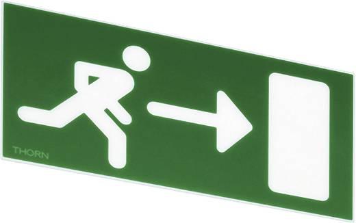 Fluchtweg-Hinweisschild rechts Thorn 96233878
