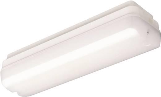 LED-Deckenleuchte 2.4 W Warm-Weiß Thorn 96241057 Weiß