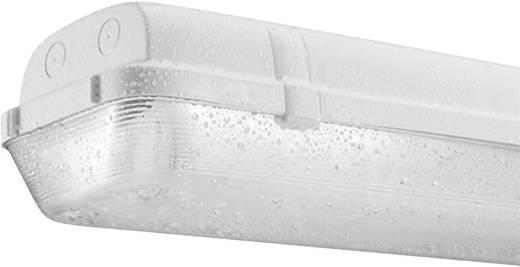 Feuchtraum-Wannenleuchte Leuchtstoffröhre G13 36 W Thorn Hellgrau
