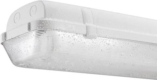 Feuchtraum-Wannenleuchte Leuchtstoffröhre G5 28 W Thorn Hellgrau