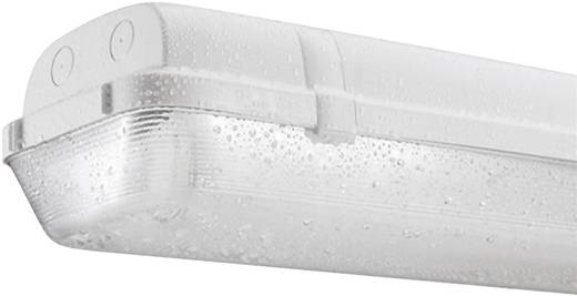 Feuchtraum-Wannenleuchte Leuchtstoffröhre G13 35 W Thorn Hellgrau