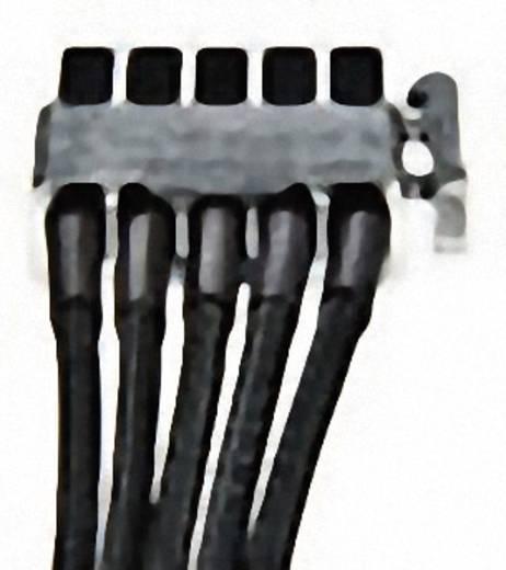 Strom Anschlusskabel [1x SATA-Strom-Stecker 15pol. - 1x bequiet! Stromanschluss modular] 0.60 m Schwarz BeQuiet