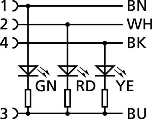 Sensor-/Aktor-Steckverbinder, konfektioniert M12 Buchse, gewinkelt 2 m Polzahl (RJ): 4 Escha 8045237 AL-WWAK4P2-2/S370 1