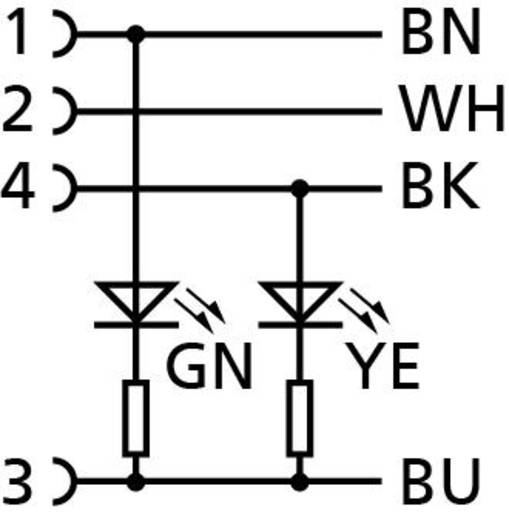 Sensor-/Aktor-Steckverbinder, konfektioniert M12 Buchse, gewinkelt 5 m Polzahl: 4 Escha 8045238 AL-WWAK4P2-5/S370 1 St.