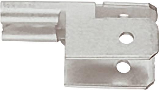 Flachsteckverteiler Steckbreite: 4.8 mm Steckdicke: 0.8 mm 90 ° Unisoliert Metall Klauke 755 1 St.