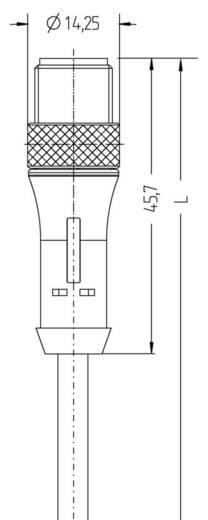 Sensor-/Aktor-Steckverbinder, konfektioniert M12 Stecker, gerade 5 m Polzahl (RJ): 5 Escha 8047916 BL-WAS4.5-5/P00 1 St.
