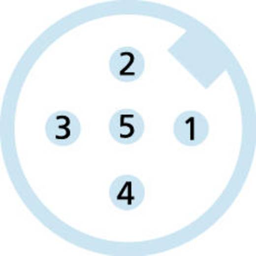 """M12 Sensor-/Aktor-Kabel """"base line"""" Pole: 5 BL-WAS4.5-5/P00 Escha Inhalt: 1 St."""