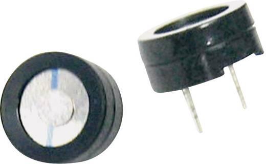 Miniatur Summer Geräusch-Entwicklung: 75 dB Spannung: 1.5 V Dauerton 716654 1 St.
