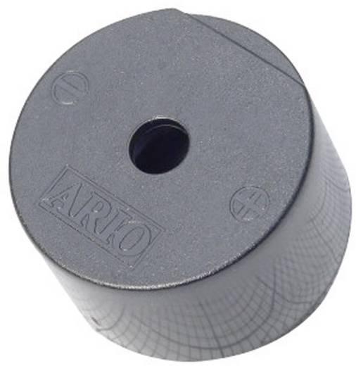 Piezo-Signalgeber Geräusch-Entwicklung: 93 dB Spannung: 9 V Dauerton 716856 1 St.