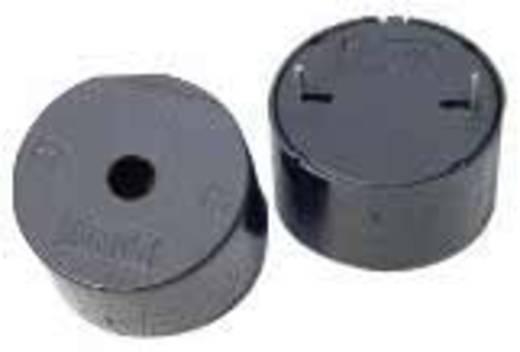 Piezo-Signalgeber Geräusch-Entwicklung: 93 dB Spannung: 9 V Dauerton 716896 1 St.