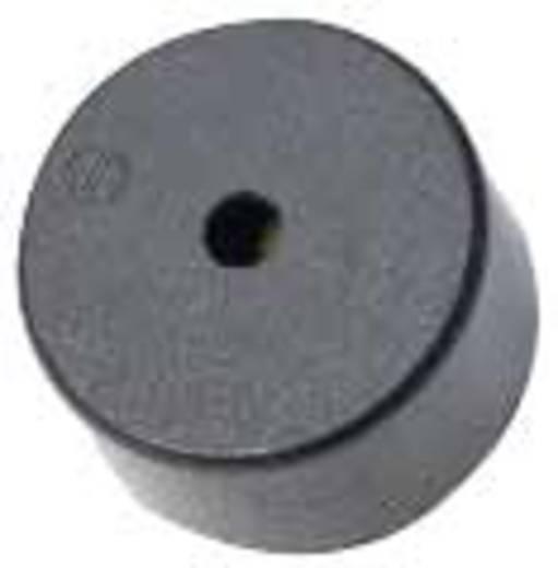 Piezo-Signalgeber Geräusch-Entwicklung: 98 dB Spannung: 9 V Dauerton 716948 1 St.