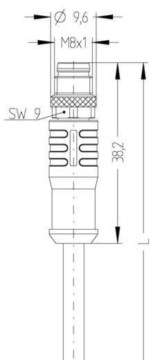 Sensor-/Aktor-Steckverbinder, konfektioniert M8 Stecker, gerade, Buchse, gerade 2 m Polzahl: 4 Escha 8046258 AL-SKPS4-2-
