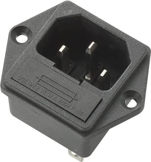 Kaltgeräte-Steckverbinder Stecker, Einbau vertikal Gesamtpolzahl: 3 10 A Schwarz 1 St.