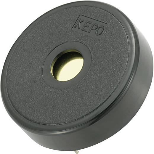 Piezo-Signalgeber KP-Serie Geräusch-Entwicklung: 75 dB 12 V/AC Inhalt: 1 St.