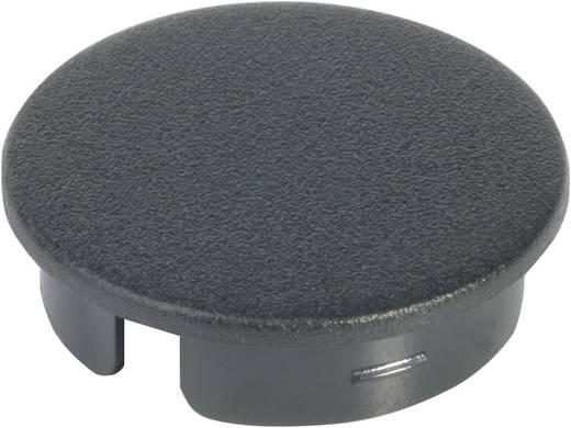 Abdeckkappe mit Zeiger Schwarz, Weiß Passend für Rundknopf 10 mm OKW A4110100 1 St.