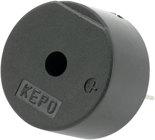 Piezo-Signalgeber Geräusch-Entwicklung: 85 dB Spannung: 12 V Dauerton KEPO KPI-G2415-K8448 1 St.