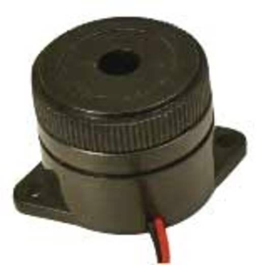 Piezo-Signalgeber Geräusch-Entwicklung: 100 dB Spannung: 12 V Intervallton 717675 1 St.