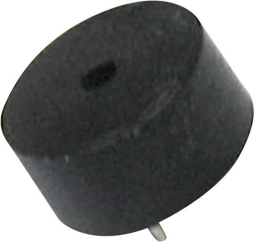 Piezokeramische Schallwandler Geräusch-Entwicklung: 89 dB 25 V/DC 4 kHz Inhalt: 1 St.