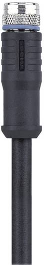 "M8 Sensor-/Aktor-Kabel ""Automation Line"" AL-SWKPS3-5/S370 Escha Inhalt: 1 St."