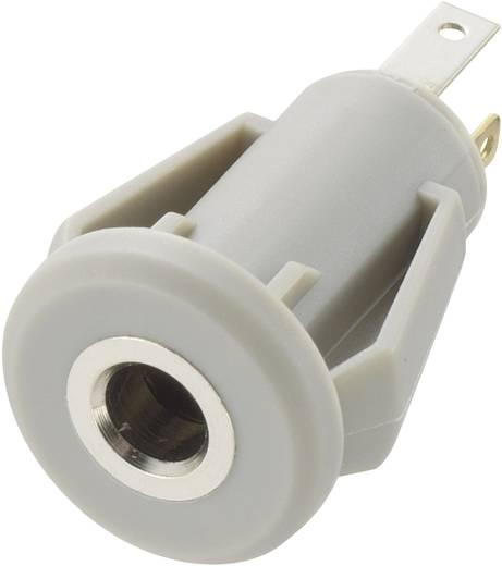 Klinken-Steckverbinder 3.5 mm Buchse, Einbau vertikal Polzahl: 4 Stereo Grau Conrad Components 1 St.