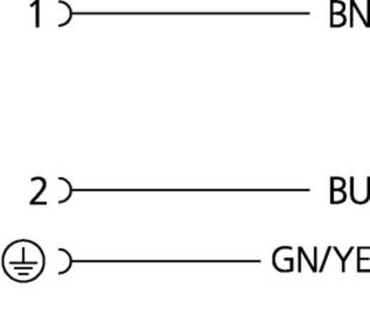 Ventilsteckverbinder Bauform BI Schwarz VBI21-230.0-5/S370 Pole:2+PE Escha Inhalt: 1 St.