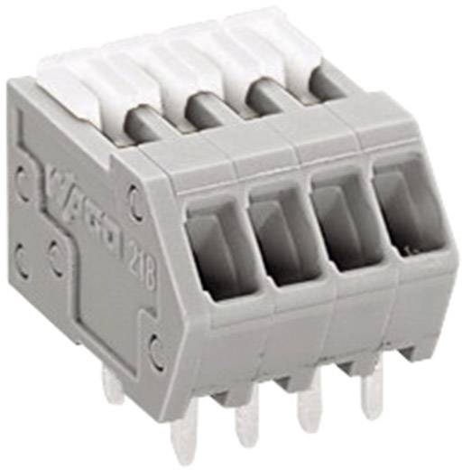 Federkraftklemmblock 0.50 mm² Polzahl 4 218-504 WAGO Grau 1 St.
