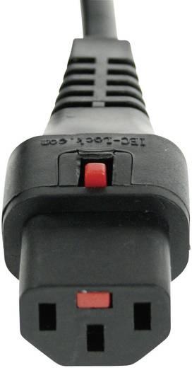 Sicherungs-Steckverbinder Kaltgeräte-Buchse C13 - Schutzkontakt-Winkelstecker Schwarz Kash 2 m 1 St.