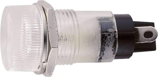 Standard Signalleuchte mit Leuchtmittel Klar B-432 12V TRANSPAREN Sedeco 1 St.