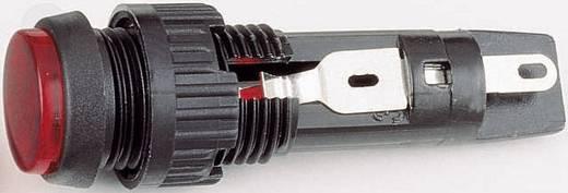 Signalleuchten mit Lampenfassung Max. 35 V 1 W Sockel=T4.6 Rot (transparent) RAFI Inhalt: 1 St.