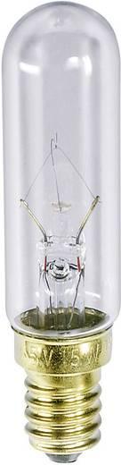 Röhrenlampe 240 - 260 V 40 W 153 - 166 mA Sockel=E14 Klar Barthelme Inhalt: 1 St.