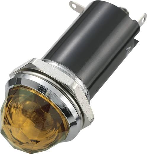 Standard Signalleuchte mit Leuchtmittel Amber 725887 SCI 1 St.