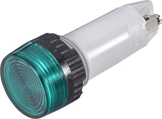 Signalleuchten mit Lampenfassung Max. 250 V 2 W Sockel=E10 Grün (transparent) RAFI Inhalt: 1 St.