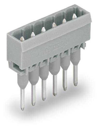 WAGO Stiftleiste (Standard) 300 Polzahl Gesamt 2 Rastermaß: 5 mm 231-162/003-000 200 St.