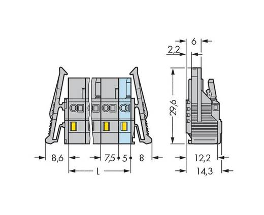 WAGO Buchsengehäuse-Kabel 231 Polzahl Gesamt 8 Rastermaß: 7.50 mm 231-208/037-000/035-000 25 St.