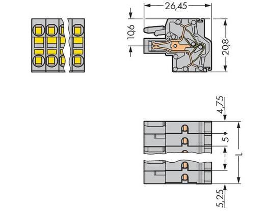 WAGO Buchsengehäuse-Kabel 231 Polzahl Gesamt 4 Rastermaß: 5 mm 231-2104/026-000 100 St.