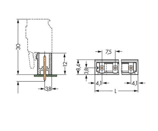 WAGO Stiftleiste (Standard) 300 Polzahl Gesamt 6 Rastermaß: 7.50 mm 231-236/001-000/105-604 100 St.