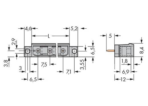 WAGO Stiftleiste (Standard) 300 Polzahl Gesamt 10 Rastermaß: 7.50 mm 231-270/040-000 50 St.