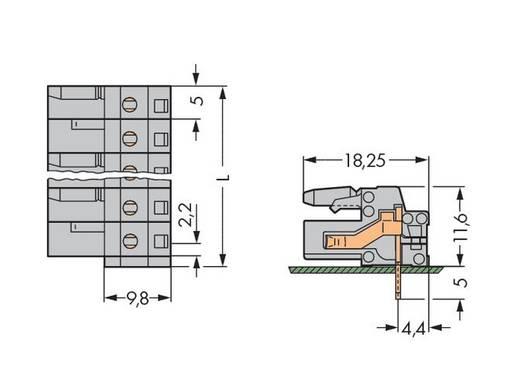 WAGO 232-241 Buchsengehäuse-Platine 232 Polzahl Gesamt 11 Rastermaß: 5 mm 25 St.