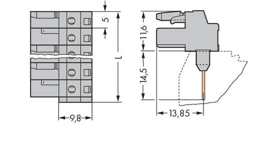 Buchsengehäuse-Platine 232 Polzahl Gesamt 16 WAGO 232-246/005-000 Rastermaß: 5 mm 25 St.