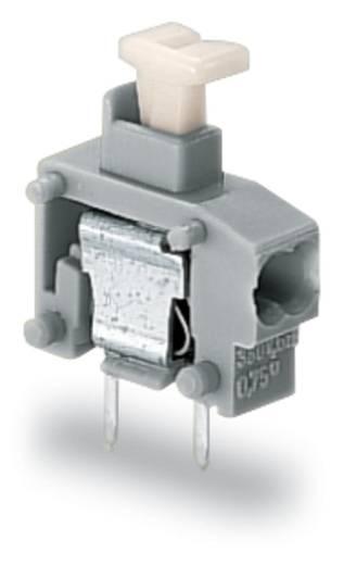 Federkraftklemmblock Polzahl 1 WAGO Licht-Grau 800 St.