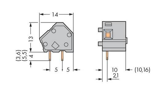 Federkraftklemmblock 2.50 mm² Polzahl 1 236-766 WAGO Orange 300 St.