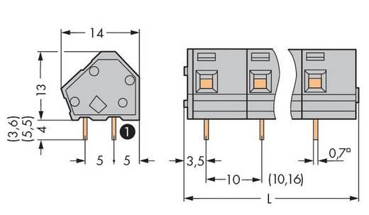Federkraftklemmblock 2.50 mm² Polzahl 4 WAGO Licht-Grau 100 St.